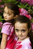 Brown a observé des filles photographie stock libre de droits