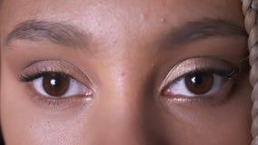 Brown oczy Afrykańska dziewczyna z dreadlocks