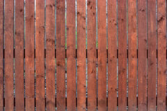 Brown ogrodzenie sosnowe deski Zdjęcia Stock