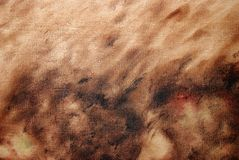Brown oil painting background. Close-up of a oil painted canvas Royalty Free Stock Photo