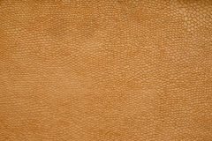 Brown old leather textured background, fashion design, wallpaper Royalty Free Stock Photo