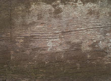 Brown old texture Royalty Free Stock Image