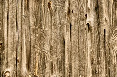 Brown old Wood background. Abstract Stock Photo