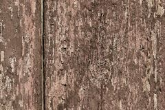 Brown old wood texture Stock Image