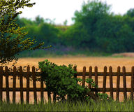 Old Wooden Fence Background Stock Photos