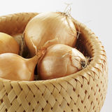 Brown onions Stock Images