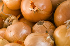 Brown onions background Royalty Free Stock Photography