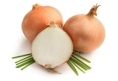 Brown onions and chives Royalty Free Stock Image
