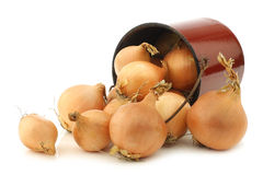 Brown onions in an vintage enamel cooking pot Royalty Free Stock Photography