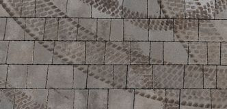 Brown opony oceny na popielatym asfaltowym tworzy okręgu kształtują zdjęcie royalty free
