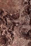 Brown Organic Stone Texture And Background. For Design, Natural Pattern Royalty Free Stock Images