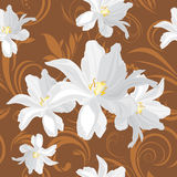 Brown ornamental background with white flowers Royalty Free Stock Photos