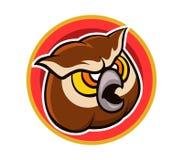 Brown Owl Cartoon Head Fotografie Stock