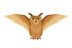 Brown owl with open wings. Vector illustration. Stock Image