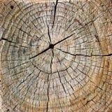 Brown pękał drewnianą teksturę z okręgami Fotografia Stock