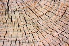 Brown pękał drewnianą teksturę z okręgami Zdjęcia Stock