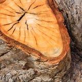 Brown pękał starą drewnianą teksturę Zdjęcia Stock