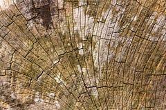 Brown pękał starą drewnianą teksturę Obrazy Stock