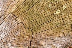 Brown pękał starą drewnianą teksturę Obraz Royalty Free