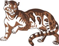 Brown panther. Big cat. Vector illustration stock illustration
