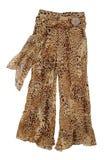 Brown pants Stock Photos