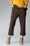 Brown pants Stock Photography