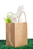 Brown paper bag with white Easter bunny Stock Photos