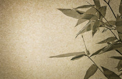 Brown paper and Bamboo leaf texture Stock Photography