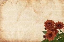 Brown Paper with Red Flowers Stock Photography