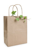 Brown paper shopping bag and plant. With white background Stock Image