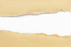 Brown paper torn. And white paper as a background Stock Image