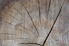 Brown paskował drewniane tekstury Fotografia Royalty Free