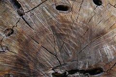 Brown paskował drewniane tekstury Zdjęcia Royalty Free