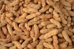 Brown peanut shells Royalty Free Stock Image