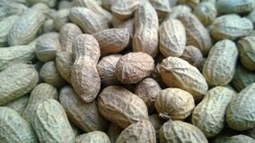 Brown Peanuts Stock Image