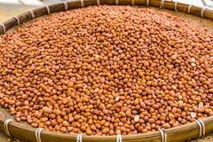 Brown Peanuts in the tray at the market. Peanuts on wooden table Stock Image