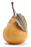 Brown pear Stock Images