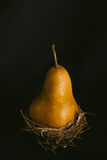 Brown Pear. Still life with brown pears royalty free stock photography
