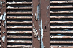 Brown Peeling Shutters Stock Image