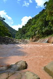 Brown Peruvian River. Fast tributary river sweeps through the Peruvian jungle on its way to the Amazon Royalty Free Stock Images