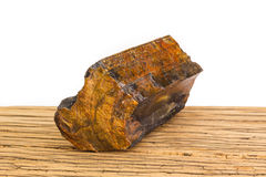 Brown petrified wood oak surface white background front focus. Stock Photography