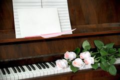 Piano, bouquet of five pale pink roses on keyboard, music paper Royalty Free Stock Photography
