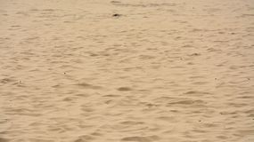 Brown piasek Zdjęcie Stock