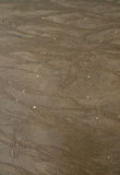 Brown piasek na plażowej teksturze. Zdjęcie Royalty Free