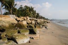 Brown piasek z skałą i koks na plaży. Obraz Royalty Free