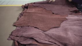 Brown pieces of leather in a rolls. Raw materials for manufacture of bags, shoes, clothing and accessories.