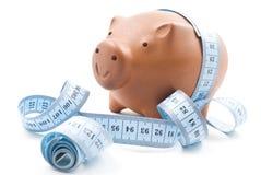 Brown Piggy Bank Royalty Free Stock Photos
