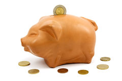 brown piggy-bank and coins Royalty Free Stock Photo