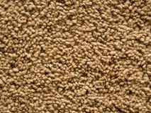 Brown pile carpet Stock Photos