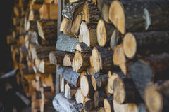 Brown Piled Firewood Royalty Free Stock Image